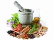 حمایت از استارتآپ های فعال در گیاهان دارویی/کشت بذری گیاه استویا