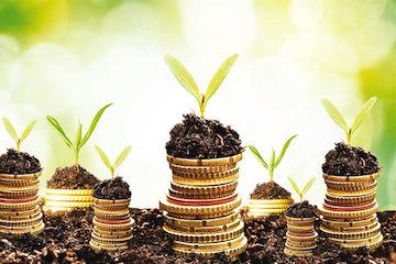 اقتصاد کشاورزی را دریابیم/ فرصتی سبز برای جهش تولید