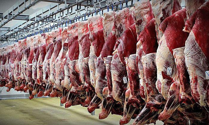 حاشیه سازی برای خرید تضمینی گوشت قرمز/ امنیت تولید را با مخاطره روبرو نکنیم